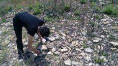野生蝎子养殖方法蝎子怎么养殖防逃措施