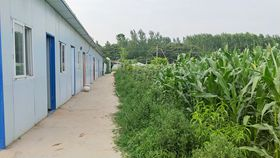 <b>怎么参观蝎子养殖公司?怎样能学到真正的亚洲城唯一官网?</b>